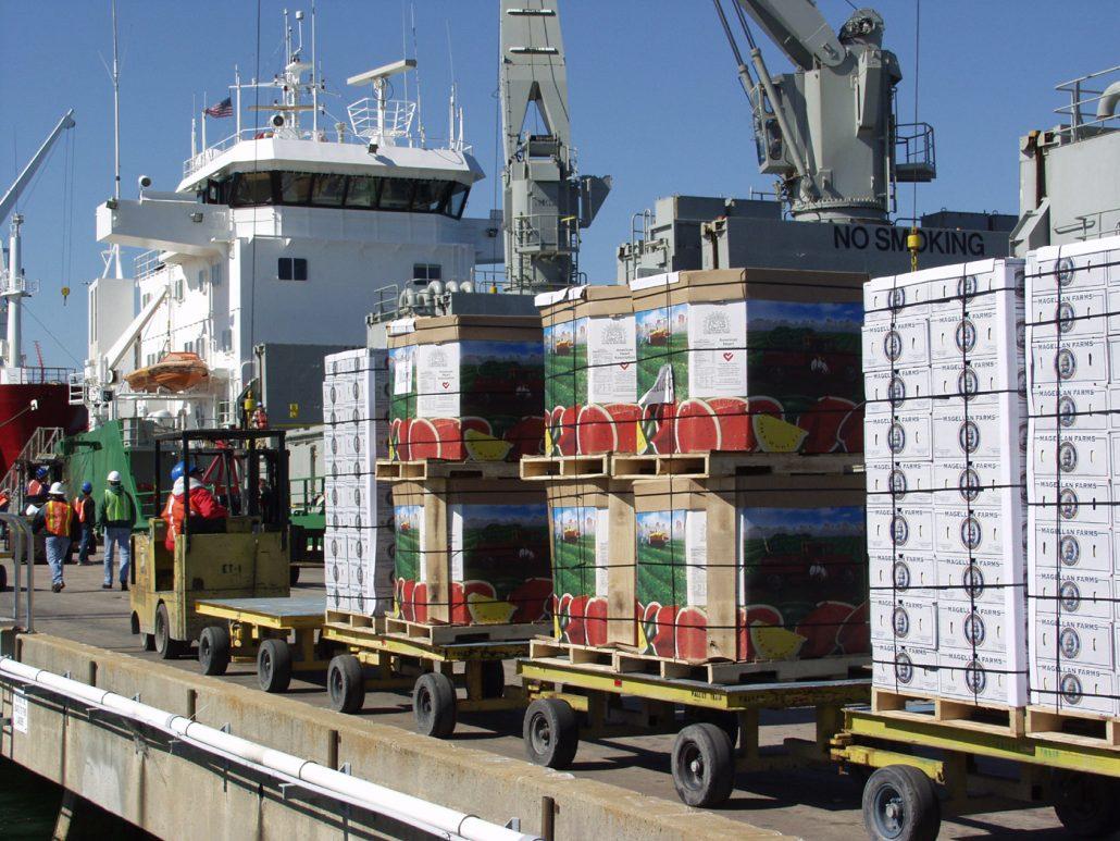 صادرات میوه به عراق-صادرات میوه به ترکیه